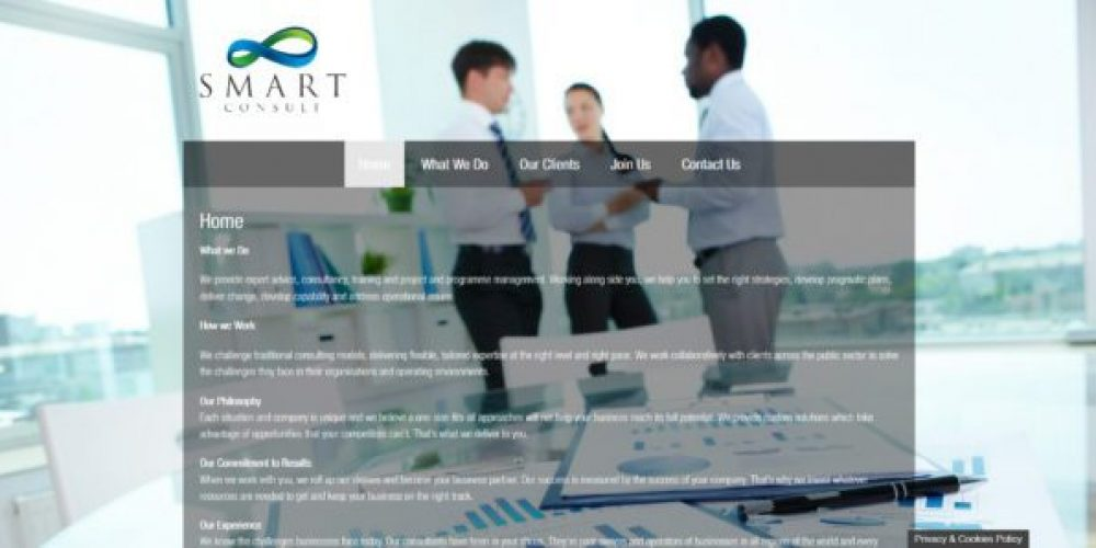 Consultancy, Training and Program management Website